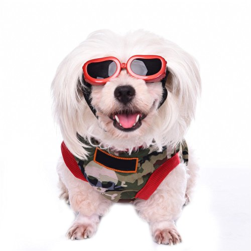UNAKIM--Portable Small Dog Sunglasses Goggles UV Sun Glasses Glasses Eye Wear Protection - Other Stories And Sunglasses