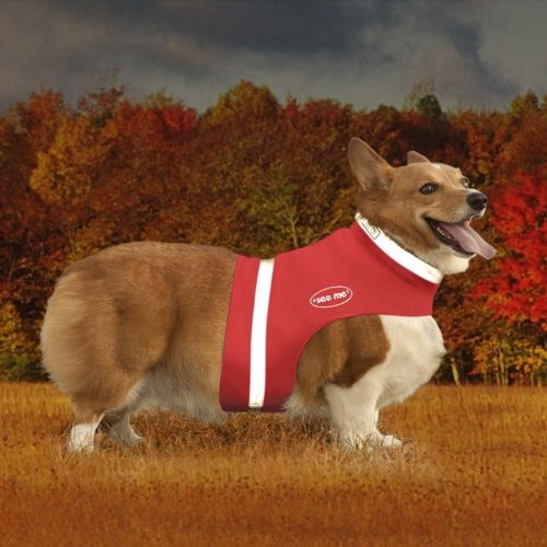 Corky's Collars See-Me Half Vest, Small, Doggone Red