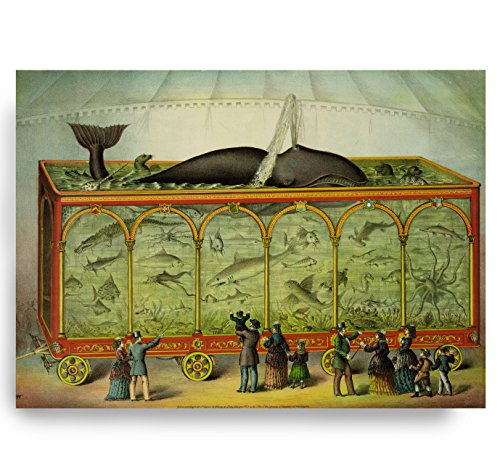 Whale Circus Aquarium Octopus Shark Victorian Steampunk Nautical Vintage Style Art Print Beach House Decor