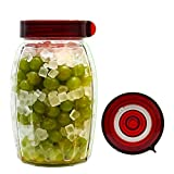 Fermentation for Beginners Wide Mouth Mason jar included For Making Pickles, Kimchi or Any Probiotic Food 1.8L