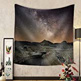 Niasjnfu Chen Custom tapestry Milky Way over the Desert of Bardenas Spain - Fabric Wall Tapestry Home Decor