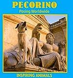 Pecorino, Leia Tait, 1590368584