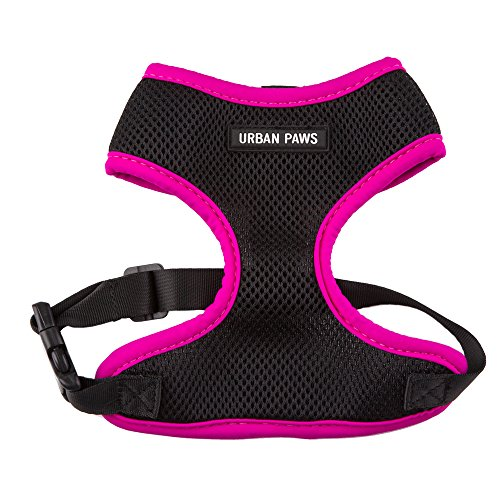 RayLineDo Safe Comfort Soft Wear Breathable Mesh Fabric Pet Vest Dog Cloth Adjustable Harness Matching Collar & Leash Available Separately Size XL In Rose Color (Pass Feeder Single)