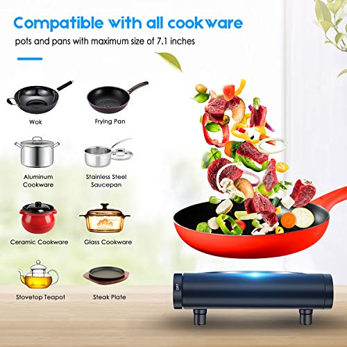Buy double burner hot plate