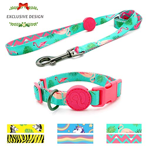 azuza Dog Collar and Leash Set, Adjustable Dog Collar with Matching Leash for Extra Small Dog, Green & Pink Elegant Flamingo Puppy Collar Leash Combo -