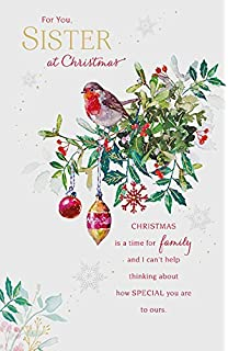 Amazon happy birthday sister greetings card office products sister robin christmas new greeting card m4hsunfo