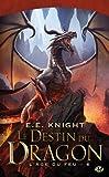 L'Âge du feu , Tome 6: Le Destin du dragon