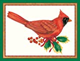 "Caspari Holiday Cards, ""Red Cardinal"" Design, Box of 20 Christmas Cards with Envelopes"