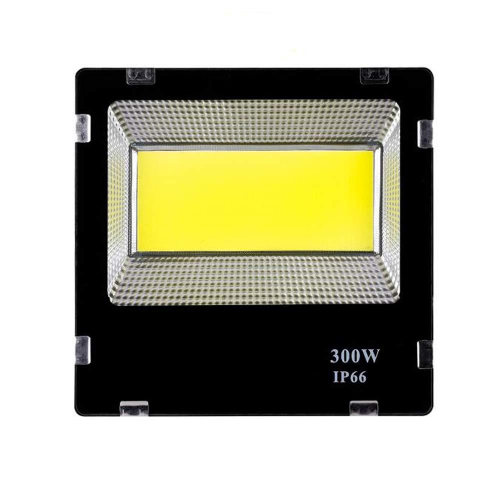 LED Faretto Da Esterno,Proiettore Luminoso Per Esterni Da Giardino (dimensioni   300W)