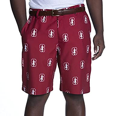 f7406cce NCAA Adult Men's Game Changer Shorts