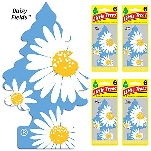 LITTLE TREES auto air freshener, Daisy Fields, 6-packs (4 count)