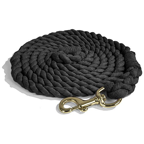 Intrepid International Heavy Duty Cotton Lead Rope with Brass Snap, Black, 10-Feet