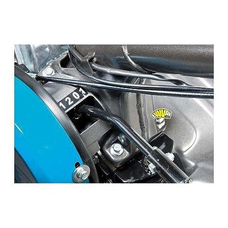 Bertolini 204 E - Motobineuse/motobèche à Moteur Thermique ...