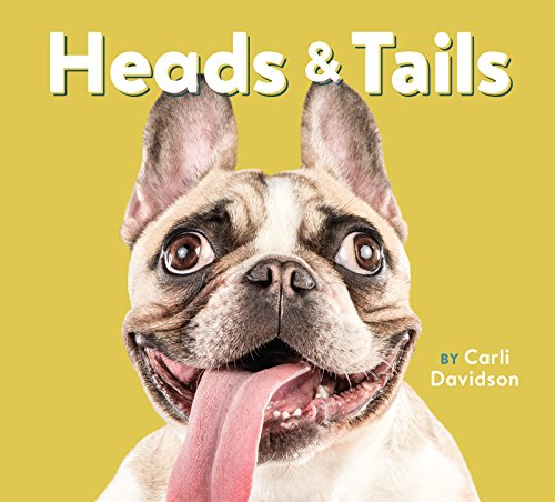 heads-tails