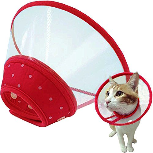 - Bolbove Pet Plastic Clear Cone Recovery E-Collar with Dots Design Soft Edge for Small Dogs & Cats (Small, Red)