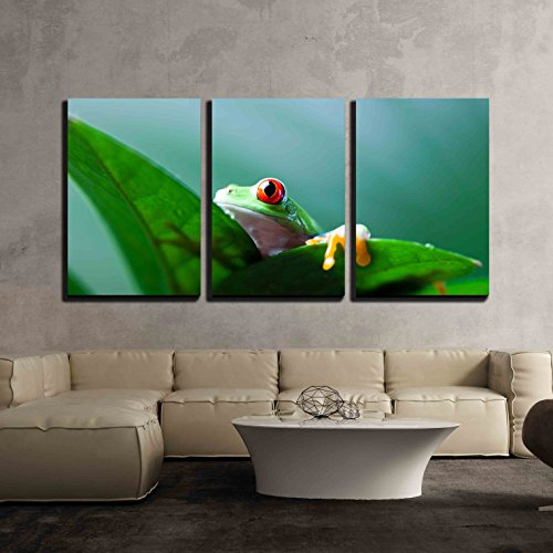 Frog Shadow on The Leaf x3 Panels