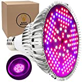 100W LED Grow Light Bulb – Full Spectrum Lamp for Indoor Plants, Garden, Flowers, Vegetables, Greenhouse & Hydroponic Growing | E27 Base with 150 LED's (AC85-265V) by Easy Bright Review