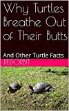 Why Turtles Breathe Out of Their Butts: And Other Turtle Facts