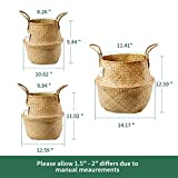 POTEY 730102 Seagrass Plant Basket Set of 3 - Hand