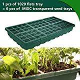 1020 Flat Trays and Transparent Cell Trays Seedling Trays