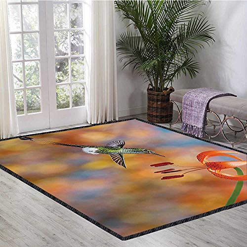 Hummingbird, Area Rug Soft, The Booted Racket Tail Feeding Nectar from Tiger Lily Blur Background Photo, Children Kids Nursery Rugs Floor Carpet 5x7 Ft Orange - Tiger Nursery Lily