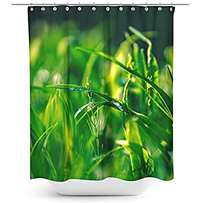 Westlake Art - Grass Up - Fabric Printed Shower Curtain - Picture Photography Waterproof Mildew Resistant Hook Bathroom - Machine Washable 71x74 Inch (DFF74)