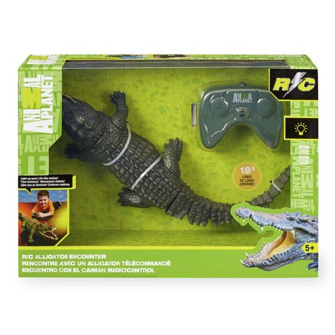 Best alligator remote control toy to buy in 2019