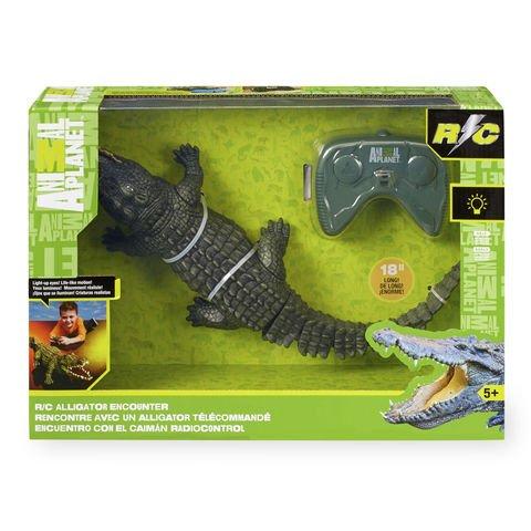 Animal Planet R/C Alligator Encounter