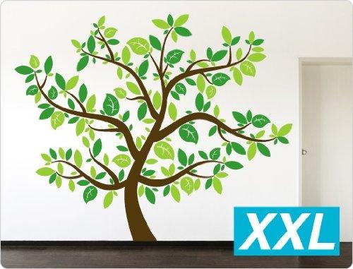 Dekodino Wandtattoo Wandtattoo Wandtattoo Baum dreifarbig B00JAA5KKQ Wandtattoos & Wandbilder d86c9f