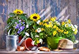 CSFOTO 5x3ft Background Gardening Tools Flowers on The Terrace Photography Backdrop Spring Watering Can Bucket Blossom Flower Sunflower Shed Gardener Photo Studio Props Polyester Wallpaper