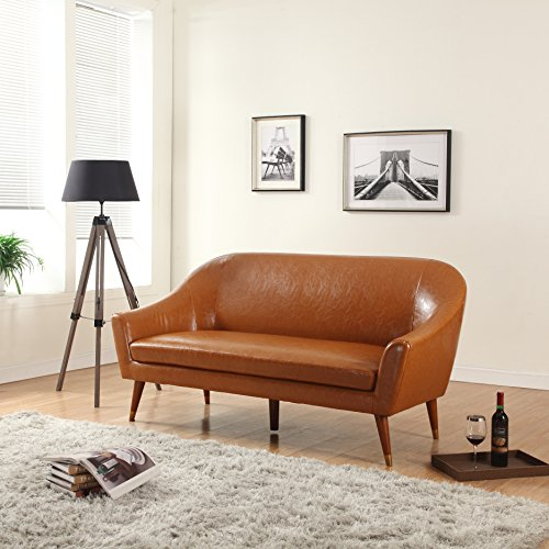 Delicieux Divano Roma Furniture   Mid Century Modern Sofa   Bonded Leather
