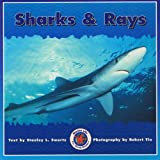 Sharks and Rays, Dominie Elementary, 0768503574
