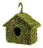Super Moss (56036) Maison Birdhouse, 6 by 8-Inch, Fresh Green