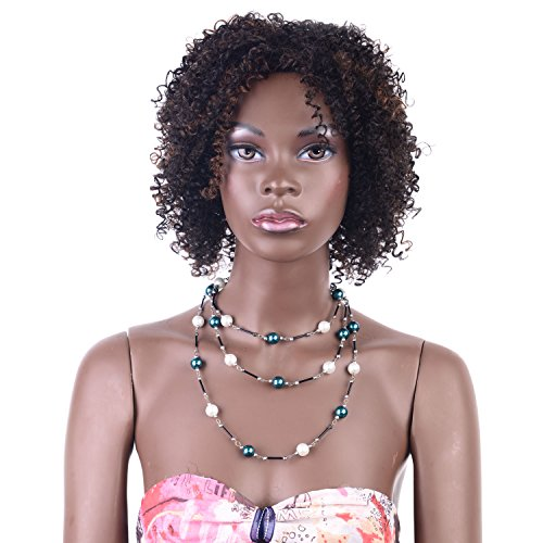 Search : Short Afro Kinky Curly Hair Wig for African Americans by LADYSTAR Black Obrme Brown (T2B/30) Synthetic Wig