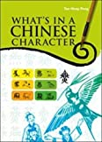 What's in a Chinese Character