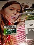 Samsung 256GB 95MB/s MicroSDXC EVO Select Memory