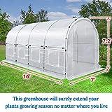 BenefitUSA Outdoor Green House Walk in Garden
