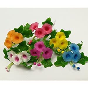 The Best Buy Set of 6 Dollhouse Miniature Fariy Garden Blank Colorful Morning Glory Flower 110