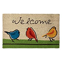 """DII Indoor/Outdoor Natural Coir Easy Clean Rubber Back Entry Way Doormat For Patio, Front Door, All Weather Exterior Doors, 18 x 30"""" - For the Birds"""