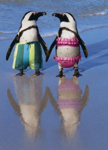 Penguins Holding Hands - Avanti Funny Anniversary Card