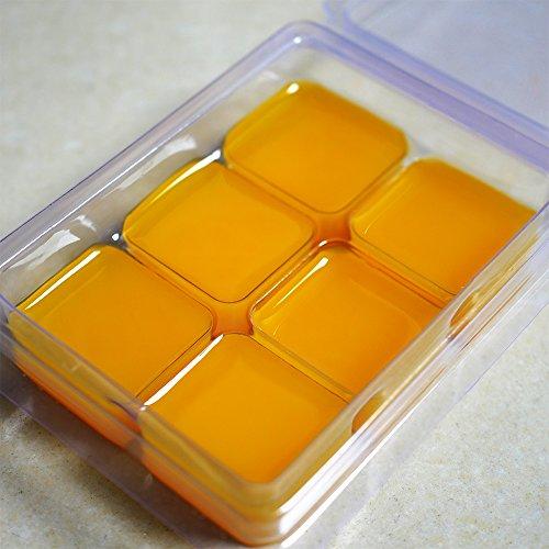 DGQ Wax Melt Molds 60 Pack Clear Empty Plastic Wax Melt Clamshells for Wickless Wax Melt Candles