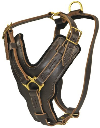 Dean and Tyler The Victory Solid Brass Hardware Dog Harness with Handle, Brown, Large - Fits Girth Size: 31-Inch to ()