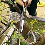 8 Inch Bonsai Carbon Steel Leaf Bud Scissor Potted Plant Modeling Long Handle Pruning Shear by Micro Shops