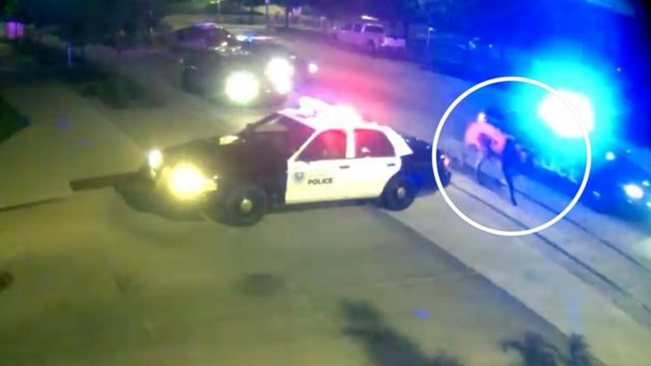 Rodeo Bull Leads Police On Wild Chase Through Streets Of