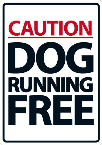 Caution Dog Running Free A5 Sign Magnet & Steel Ltd 2721