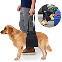 roadwi Dog Lift Support & Rehabilitation Harness, Oxford and Nylon Pad with Reflective Stitching, Ideal Assist Sling for Dogs Recovering, Recommended for 25-55lbs Dogs (Medium/Black)