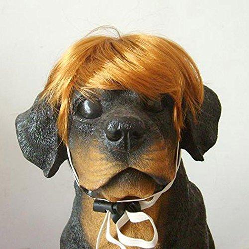 Lecent@ Pet Supplies Dog Costumes Pet Hair Pet