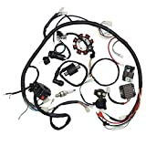 Complete Electrics Wiring Harness Kit Ignition Coil Kits For Chinese Dirt Bike ATV QUAD 150-250 300CC