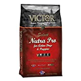 VICTOR Nutra Pro Dry Dog Food, 40 lb. Bag Review