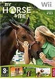 Mon cheval et moi